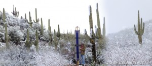 World's Largest Mohair Cinch in an Arizona snow storm.